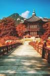 6 Destinasi Wissata Ala Korea di Indonesia